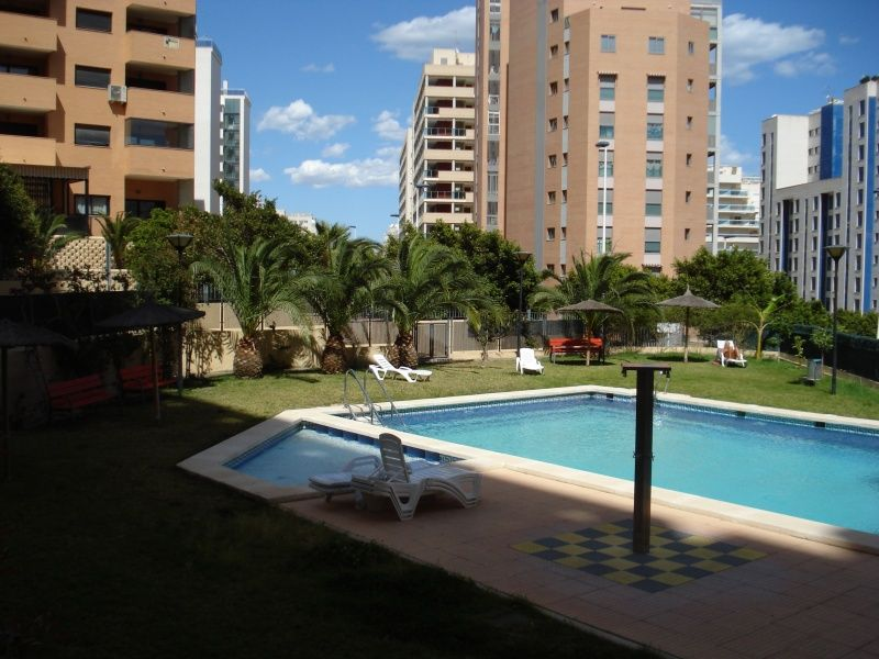 The communal gardens and swimming pool area.